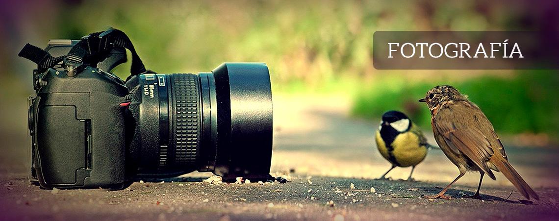 Servicio de fotografía - Grupo Creativo Macondo - Cartagena