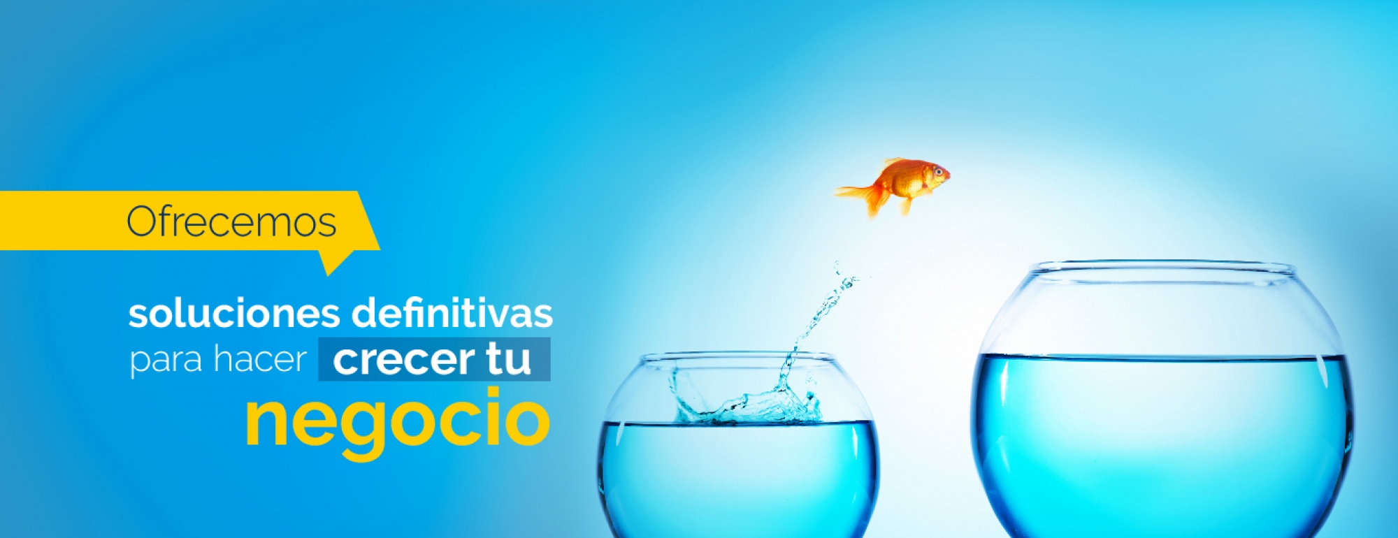 Servicios - Grupo Creativo Macondo