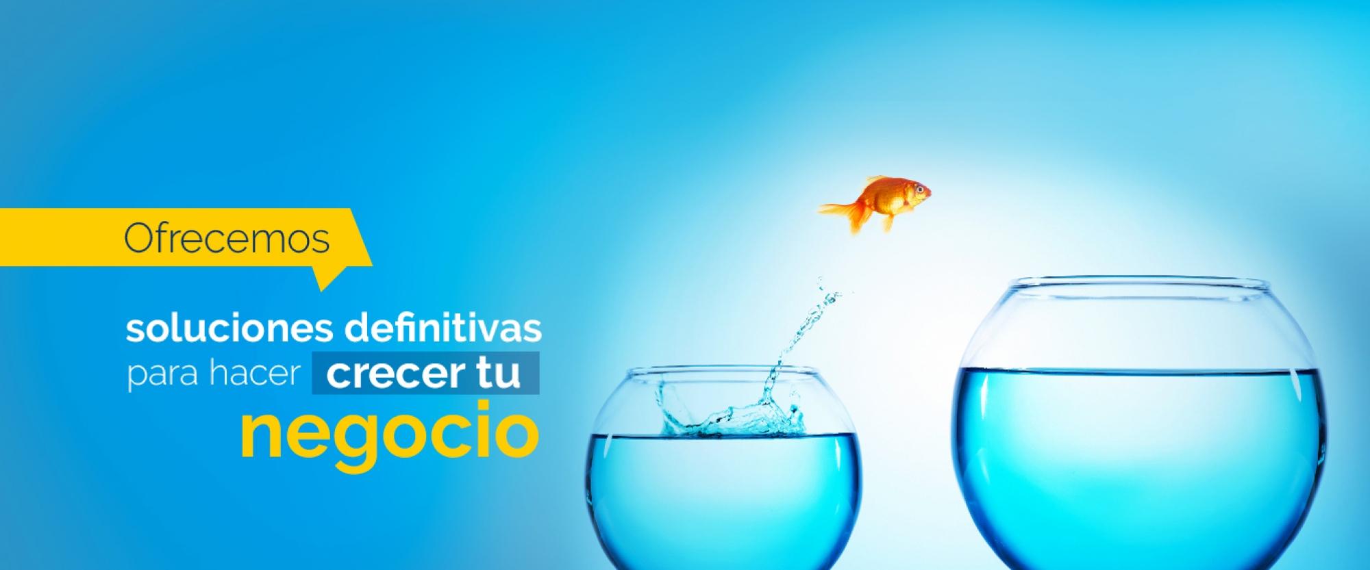 Servicios Grupo Creativo Macondo